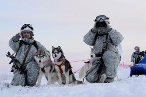 Đang luyện tập, 4 quân nhân Nga tử nạn vì bị tuyết vùi