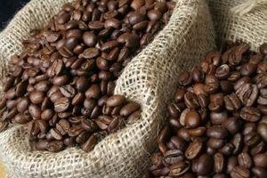 Giá cà phê hôm nay 9/8: Tăng phiên thứ ba liên tiếp