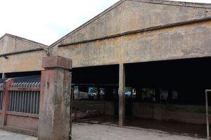 Thừa Thiên Huế: Hàng trăm hộ dân kêu trời vì lò mổ gia súc gây ô nhiễm