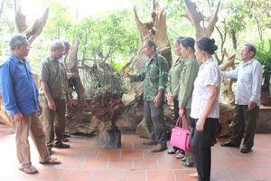 Nghị lực của cựu chiến binh Đỗ Văn Hạ