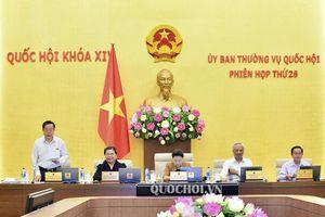 Ubtvqh cho ý kiến về vốn viện trợ không hoàn lại của Chính phủ Ai Len cho Chương trình 135