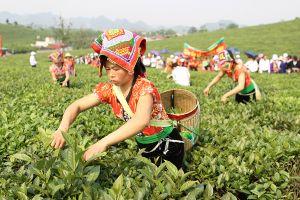 Nhiều hoạt động hấp dẫn trong Tuần Văn hóa - Du lịch tỉnh Sơn La 2018