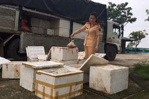Thanh Hóa: Bắt giữ xe tải vận chuyển 250 kg thịt gà bốc mùi ôi thiu