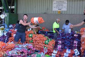 Hà Nội bắt tay tập đoàn Pháp xây dựng chợ đầu mối nông sản quốc tế