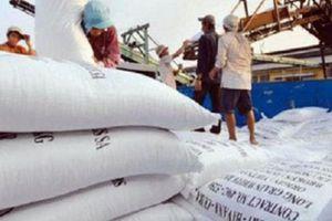 Xuất khẩu gạo sôi động do nhu cầu thị trường tăng