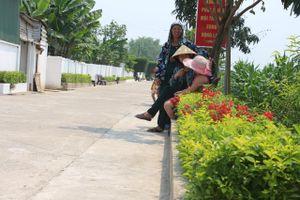 Tiêu chí thứ 20 - Nét đặc trưng của nông thôn mới Hà Tĩnh