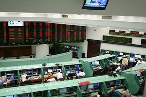 Thổ Nhĩ Kỳ điều tra hành động đe dọa an ninh kinh tế