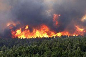 Khắp nước Mỹ đang bị phá hủy bởi hơn 100 đám cháy rừng lớn
