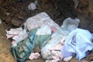 Hải quan Lào Cai: Bắt giữ 140 kg nội tạng động vật đông lạnh
