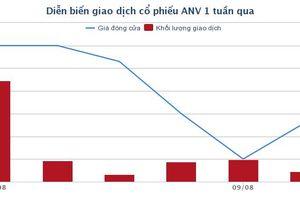 2 tháng thê thảm của ANV, cổ phiếu 'hàng nóng' 2018