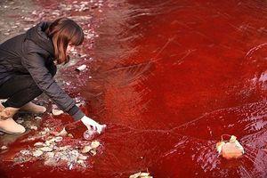 16 bức ảnh về thực trạng ô nhiễm môi trường khiến thế giới giật mình