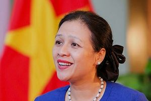 Việt Nam ghi dấu ấn trên con đường ngoại giao đa phương