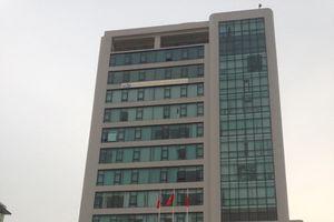 Cơ cấu, chức năng mới của Tổng cục Đường bộ Việt Nam