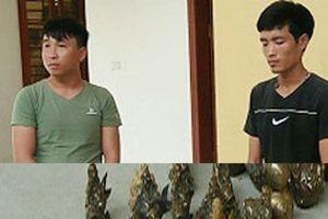 Bắc Kạn: Bắt giữ nhóm đối tượng lừa bán đồ cổ giả chiếm đoạt tài sản