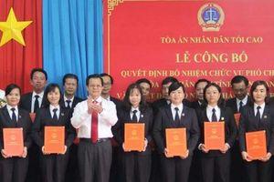 TANDTC bổ nhiệm nhiều nhân sự mới