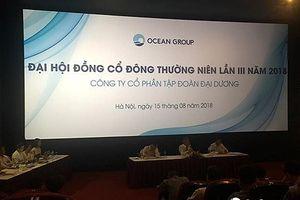 Phó Chủ tịch mới của Ocean Group là ai?