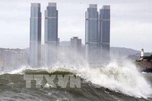 Các hãng hàng không Hàn Quốc hủy hơn 400 chuyến bay do bão Soulik