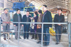 Công ty Supe Phốt phát và Hóa chất Lâm Thao: Sản phẩm phục vụ cho nền nông nghiệp xanh và bền vững