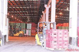 Công ty Cổ phần Bia Sài Gòn - Sông Lam: Lan tỏa thương hiệu bia Sài Gòn giữa lòng xứ Nghệ