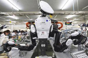 Đi tìm lời kết cho 'chuyện con robot' tại Việt Nam