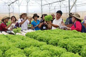 Xu thế ảnh hưởng đến phát triển bền vững của Việt Nam