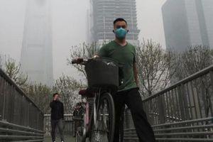 Ô nhiễm không khí tác động nguy hại tới trí thông minh