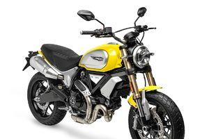 Có gì hấp dẫn với Ducati Scrambler 1100 giá 362 triệu đồng tại Ấn Độ