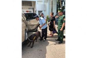 Hải quan Kiên Giang chủ động đấu tranh chống buôn lậu