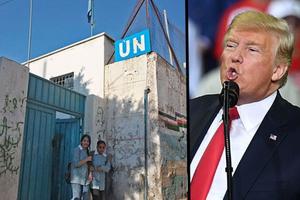 Mỹ chính thức cắt viện trợ cho Quỹ hỗ trợ nhân đạo LHQ