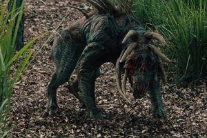 Hành trình 'Predator - Quái thú vô hình' khuấy đảo màn ảnh rộng