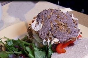 Các món ăn làm từ côn trùng, thách thức thực khách ở Anh