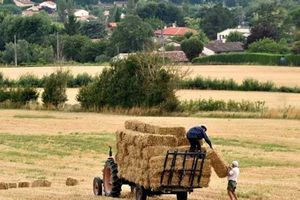 Trung Quốc đổ tiền mua đất nông nghiệp các nước phát triển