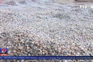 Sẽ xét xử vụ phế phẩm cà phê, cát sỏi trộn lõi pin tại Đắk Nông