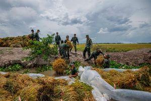 Cận cảnh bộ đội tỉnh Kiên Giang giúp nông dân ứng phó khi lũ về