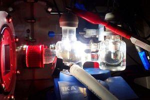 Anh phát minh ra hệ thống quang hợp nhân tạo