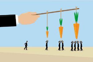 Dùng 'cây gậy' hay 'củ cà rốt' trong quản trị nhân sự?