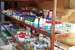 Bộ NN-PTNT loại bỏ 4 hoạt chất thuốc BVTV