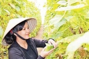 Để nông dân tin tưởng, tham gia hợp tác xã