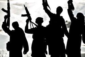 Chuyên gia Việt Nam nhận định hậu quả khủng khiếp nếu khủng bố IS và al-Qaeda hợp nhất
