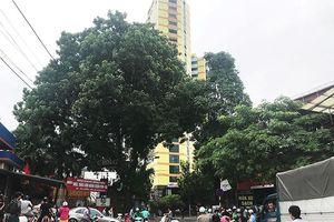 Dân chung cư cao tầng Hà Nội cảm nhận rung chấn động đất