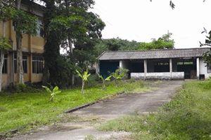 Lãng phí lớn ở Nhà máy đường Linh Cảm