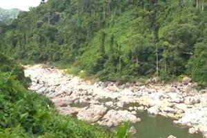 Quảng Nam: Thủy điện được hay mất?