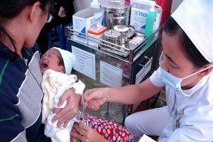 Lô vắc xin thay thế Quinvaxem đầu tiên chưa đạt chất lượng