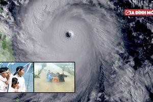 Nhìn lại 8 cơn bão ám ảnh nhất đổ bộ vào Việt Nam trong những năm qua