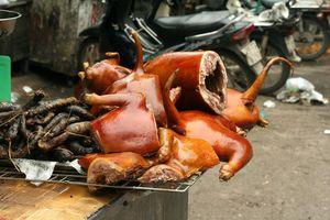 Hà Nội ra văn bản khuyến khích hạn chế ăn thịt chó, mèo