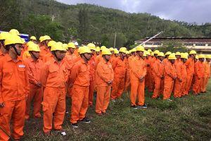 Điện lực 13 tỉnh miền Trung thực hành chống bão cấp 11 – 12 đổ bộ vào Bình Định