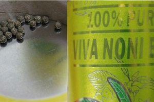 Thu hồi toàn quốc bột nhàu 100% Pure Vina Noni Ball