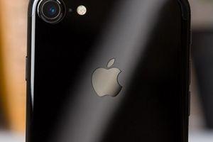 iPhone 9 giá phải chăng sẽ thắng thế trong năm nay