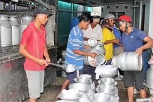 Tháo gỡ khó khăn cho nông dân nuôi bò sữa ở Sóc Trăng