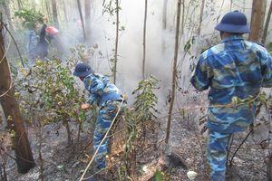 Vùng 3 Hải quân giúp dân chữa cháy rừng